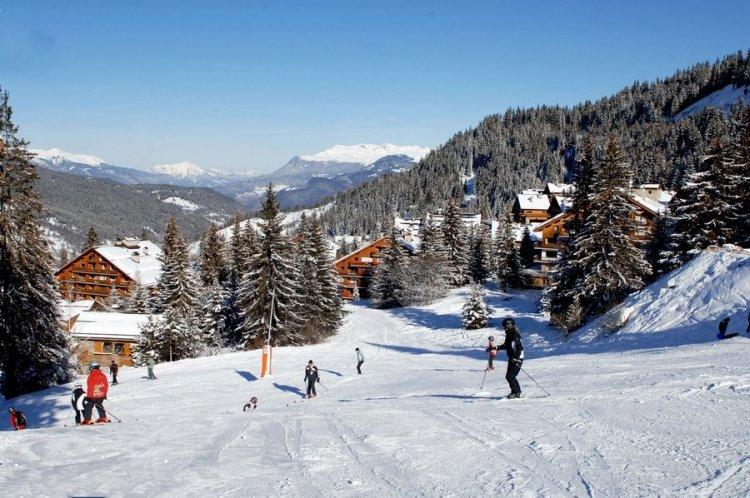 الأطفال يستمتعون بالتزلج على الجليد بجبال الألب