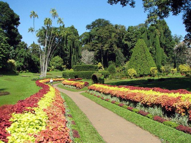 أروع النباتات في الحديقة الملكية