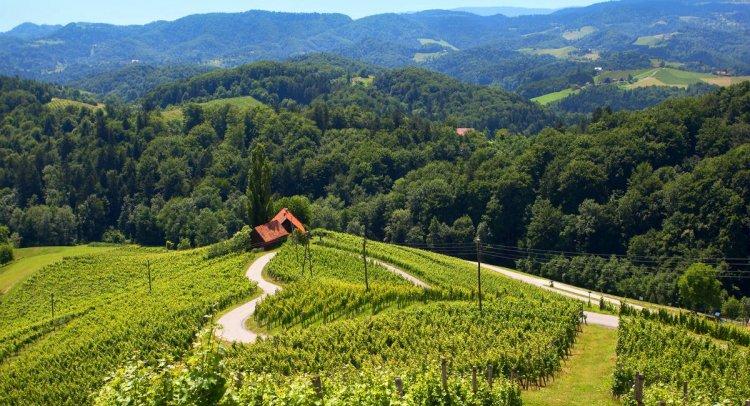 روعة المنظر في سلوفينيا