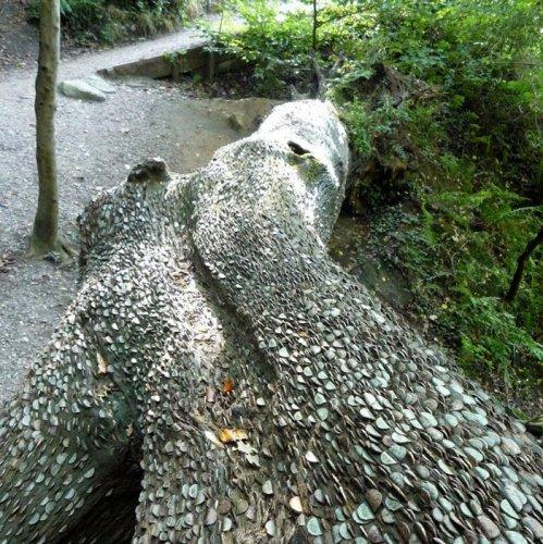 شجرة العجائب