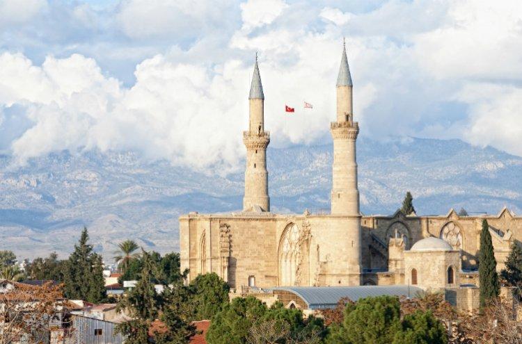 مسجد السليمية