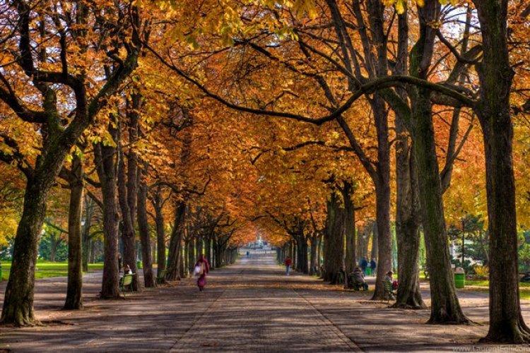 حديقة بارك ديس باستيون سويسرا