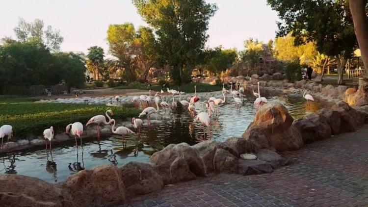 متنزه محمية العرين في البحرين