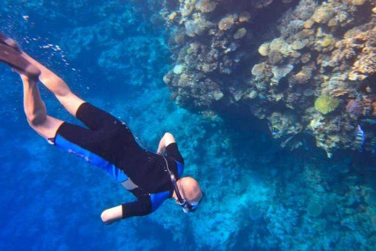 الشعاب المرجانية في جزيرة الجفتون