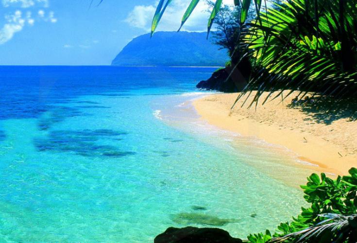 جزيرة بورنيو أكبر جزر آسيا