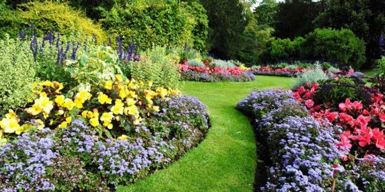 حديقة أوتي النباتية