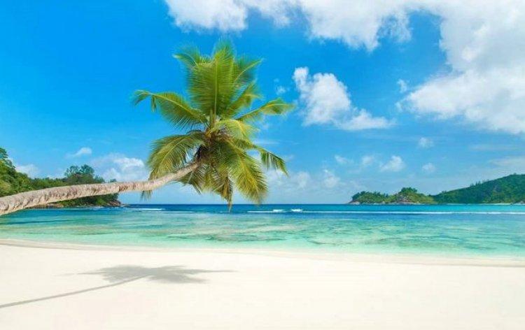 أحد شواطئ جزيرة سيشل