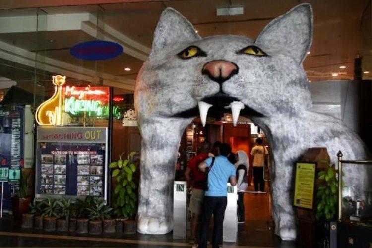 متحف القطط في كوتشينغ ماليزيا