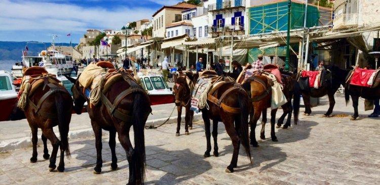 نشاط ركوب الخيل في جزيرة هيدرا