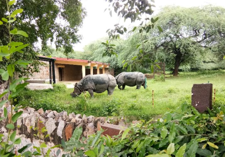حديقة حيوان دلهي في نيودلهي