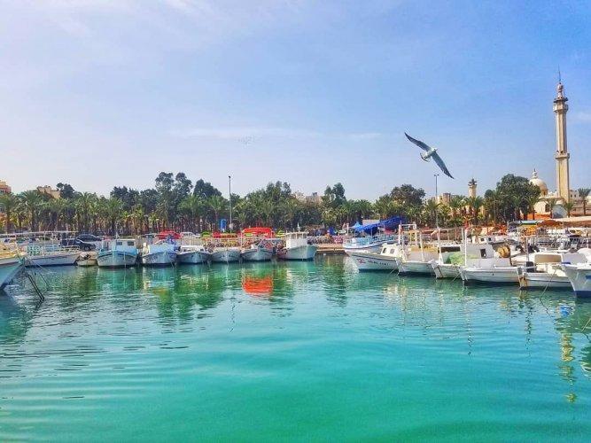 الميناء في شمال لبنان