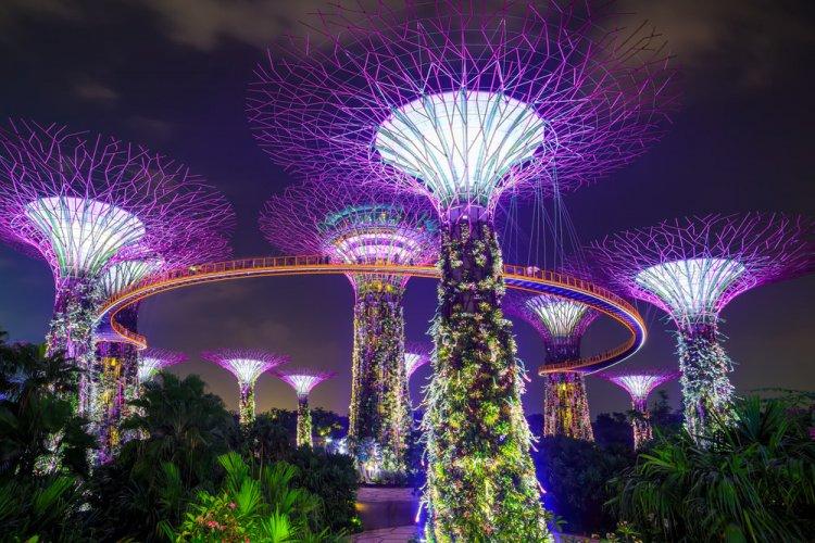 الحدائق الاستوائية