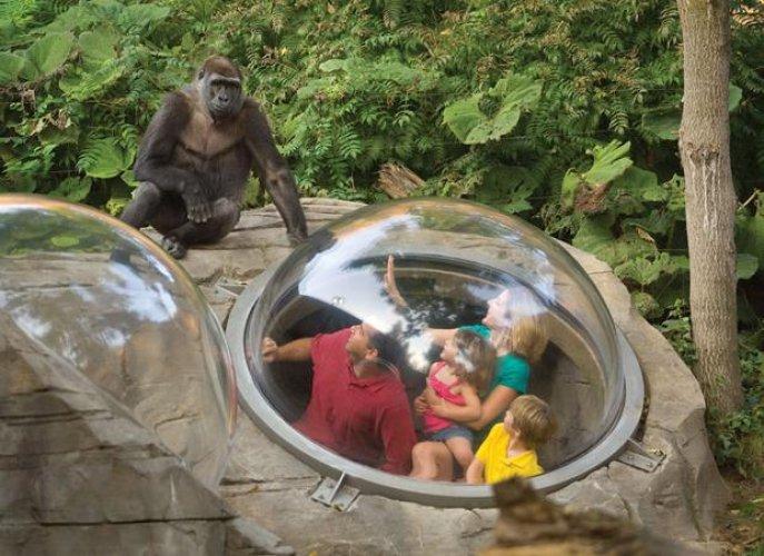 حديقة حيوانات أوماها