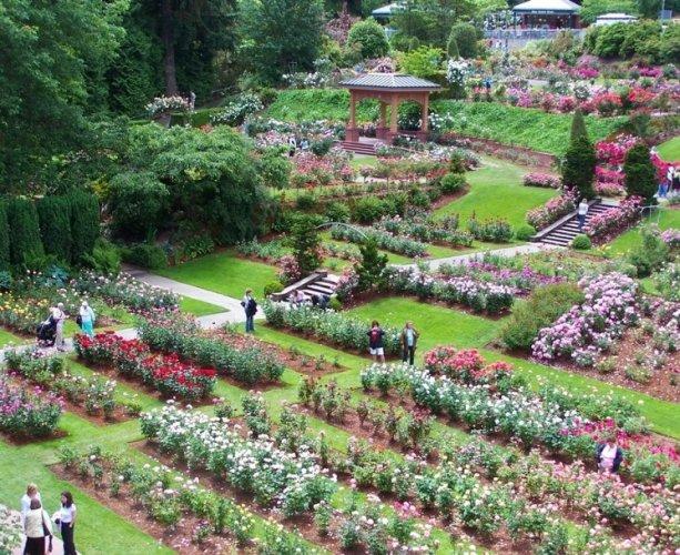 حديقة اختبار الزهور الدولية في مدينة بورتلاند الأمريكية