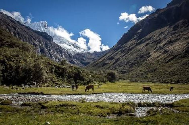 حديقةهواسكاران الوطنيةفي بيرو