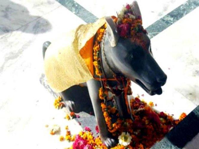 معبد الكلب