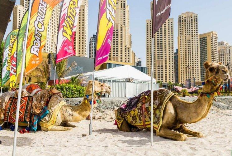 شاطئ ال جي بار في دبي
