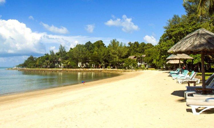 شاطئ القرود بينانج