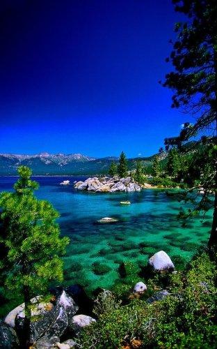 بحيرة تاهو في كاليفورنيا