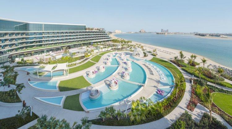 دبليو دبي، النخلة