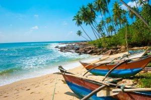 السفر الى سريلانكا
