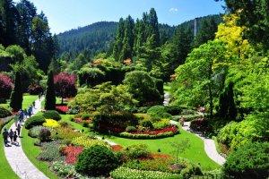 حدائق اليابان الساحرة