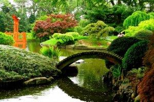 حديقة النباتات في نيويورك