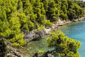 جزيرة ألونيسوس