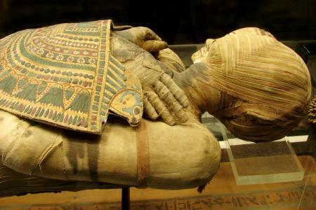 المتحف المصري يعرض 226 قطعة أثرية مهربة