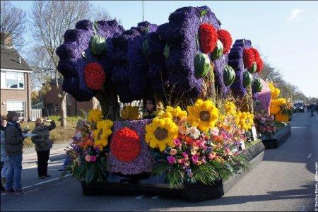 مواكب الزهور
