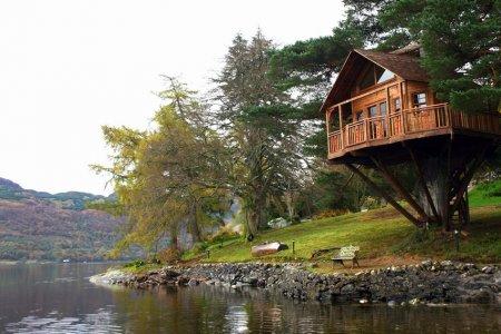 منزل الشجرة على بحيرة Goal