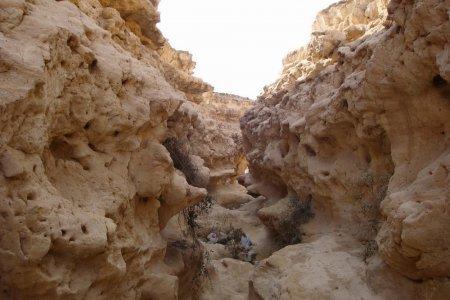 المحميات الطبيعية في مصر