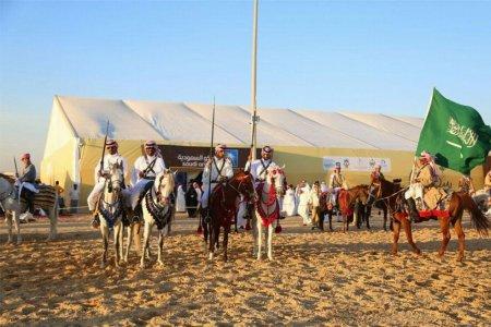 مهرجان سفاري بقيق