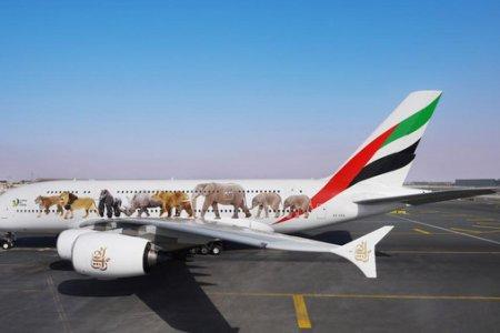 """""""إيكاو"""" الإمارات الأولى عالمياً في تطبيق المعايير الأمنية بأمن الطيران"""