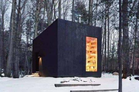 غرفة مكتبة تقع في وسط غابات ولاية نيويورك