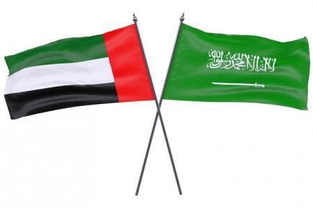 الإمارات والسعودية تتفقان على إنشاء سوق طيران مشتركة