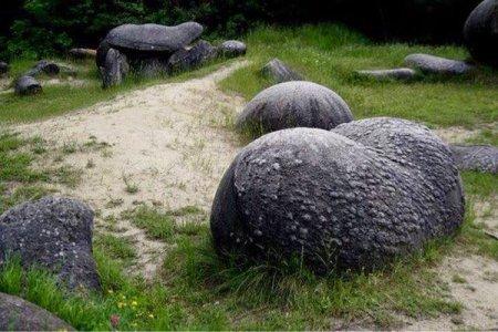الحجارة الحية في رومانيا