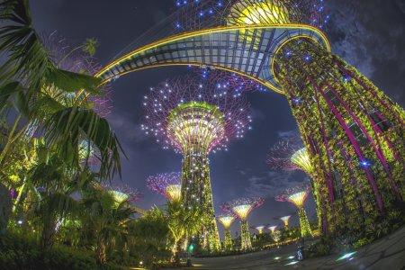 جمال السياحية في سنغافورة
