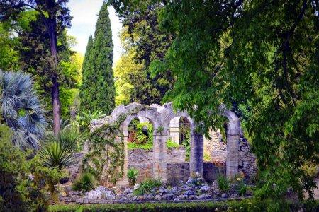 الحديقة النباتية دى مونبلييه