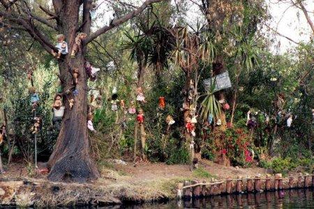 جزيرة الدمى فى المكسيك