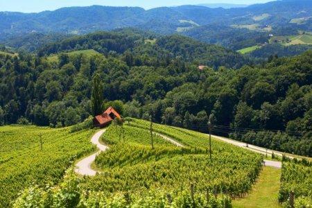 سلوفينيا بلد الحب