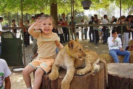 أخطر حديقة حيوان في العالم.. لوجان