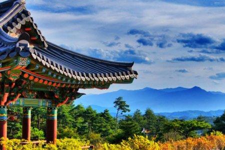 كوريا الجنوبية