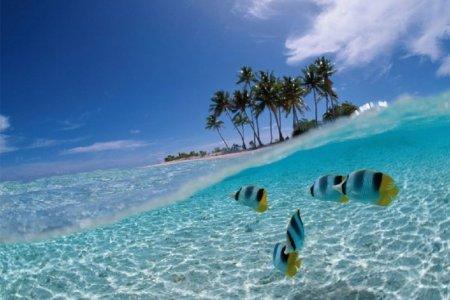 جزيرة بوناكين في إندونيسيا
