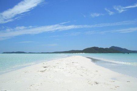 شاطئ مانلي