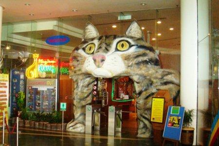 متحف القطط