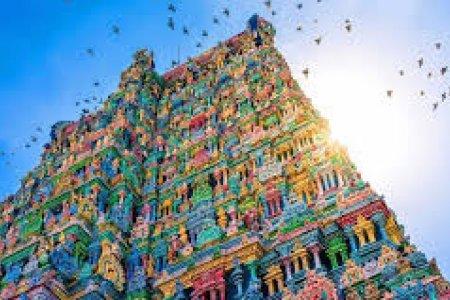 الهند بلد العجائب