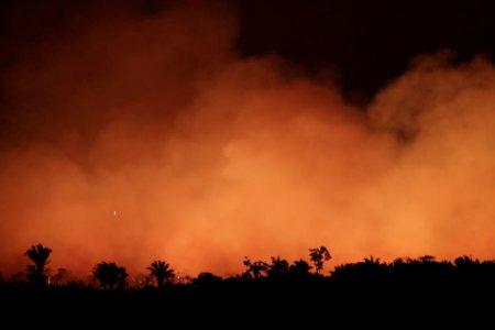 حرائق في غابات الامازون