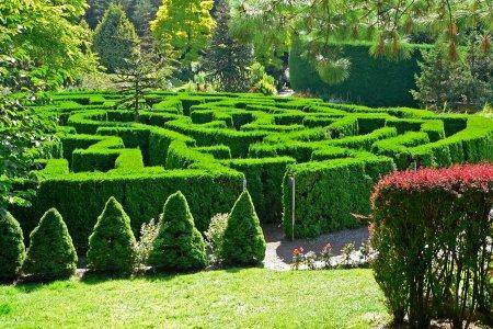 حدائق النباتات الملكية