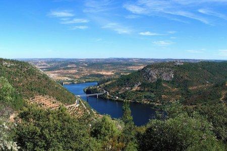 نهر تاجة